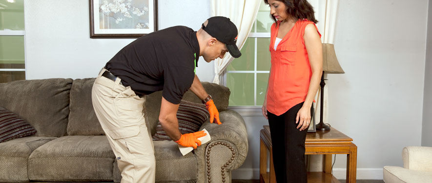 Lehi, UT carpet upholstery cleaning