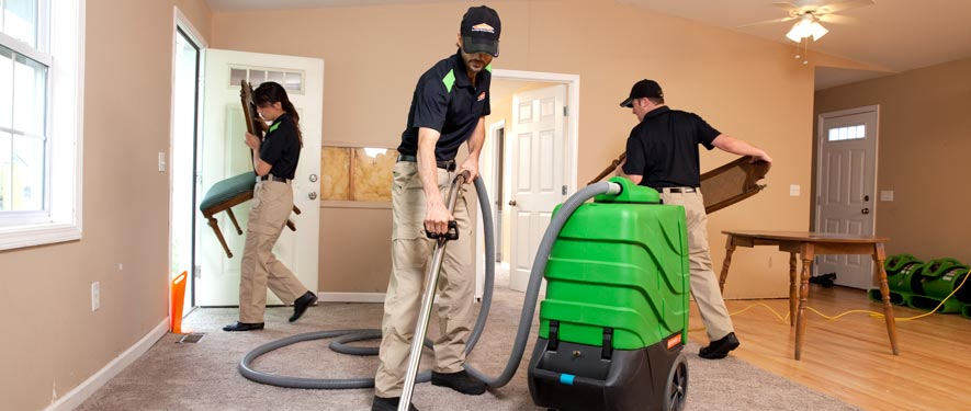 Lehi, UT cleaning services